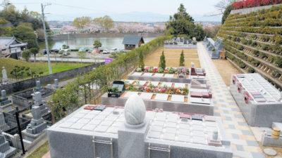 蓮・樹木葬・いどろり 2020年の桜