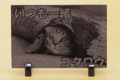 レーザー彫刻 猫